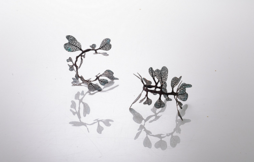 Wu Ching. Laurų vainikas Laurel crown. 2013